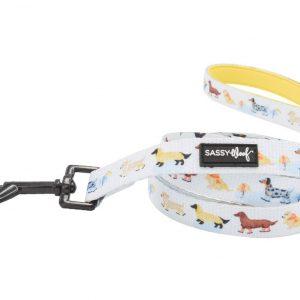 Sassy Woof Dog Leash Dachshund