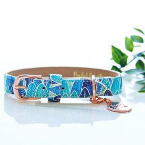 Pawfect Pals Don't Stop Be-Leafing Dog Collar